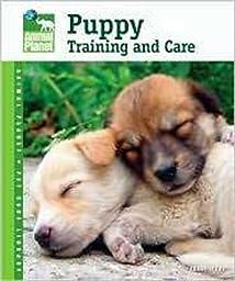 Tfh/Nylabone DTFAP044 Animal Planet Puppy Training