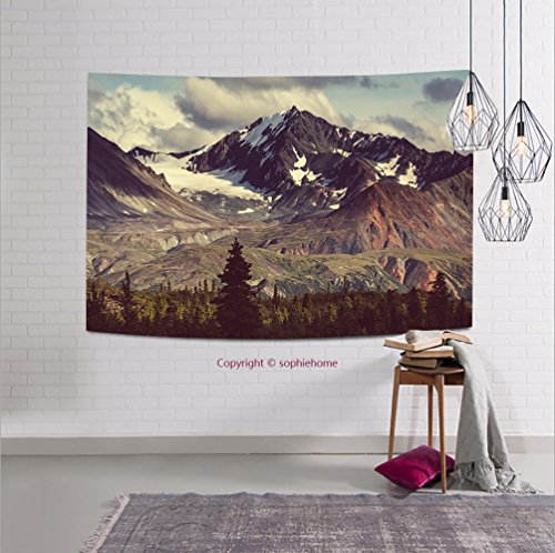 sophiehome-309705941 Landscapes on Denali highway.Alaska. Instagram filter tapestry wall hanging magical thinking tapestry 80W x 59L Inches