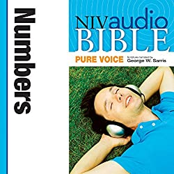 NIV Audio Bible, Pure Voice: Numbers