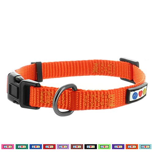 Pawtitas Dog Collar for Extra Small Dogs Training Puppy Collar with Solid - XS - Orange
