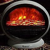 Warmex PTC 09 Bonfire Room Heater