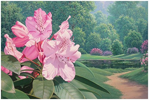 Pink Rhodies Travel Art Print Poster by Rose Gehrman