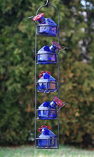 Parasol LP5B Hand Blown Glass Hummingbird Feeder Lunch Pail 5 Blue ()