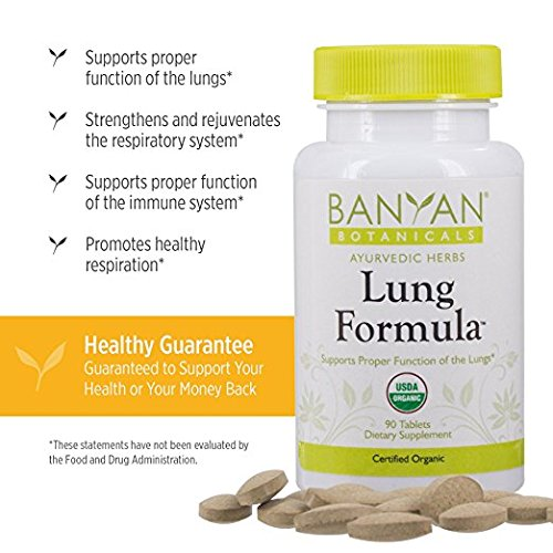 Banyan Botanicals Lung Formula - USDA Certified Organic - 90 tablets -  Healthy, Clear Breathing &