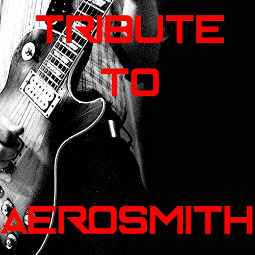 Aerosmith Medley: Pink / Walk This Way / Dream On / Janie's Got a Gun / Sweet Emotion / Fine / Love in a Elevator / Big Ten Inch Record / Toys in the Attic / Angel / Dude Looks Like a Lady / I Don't Wanna Miss a Thing (Aerosmith Don T Wanna Miss A Thing)