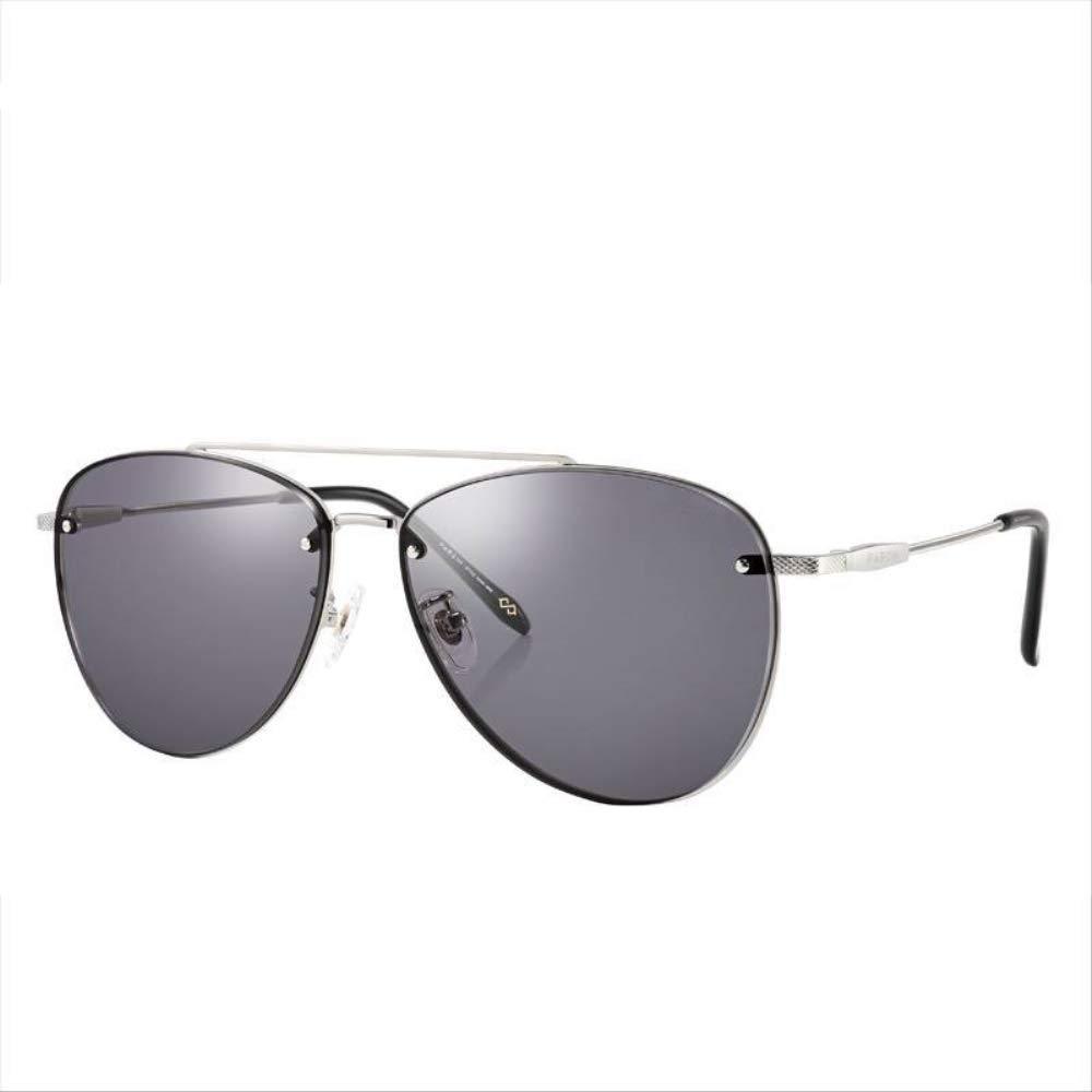 ZCFDDDPサングラス新しいサングラスメンズ金属フレームメガネ運転用品質ナイロンレンズ職業紫外線保護サングラスシルバーフレームブラックL   B07QZCN7L2
