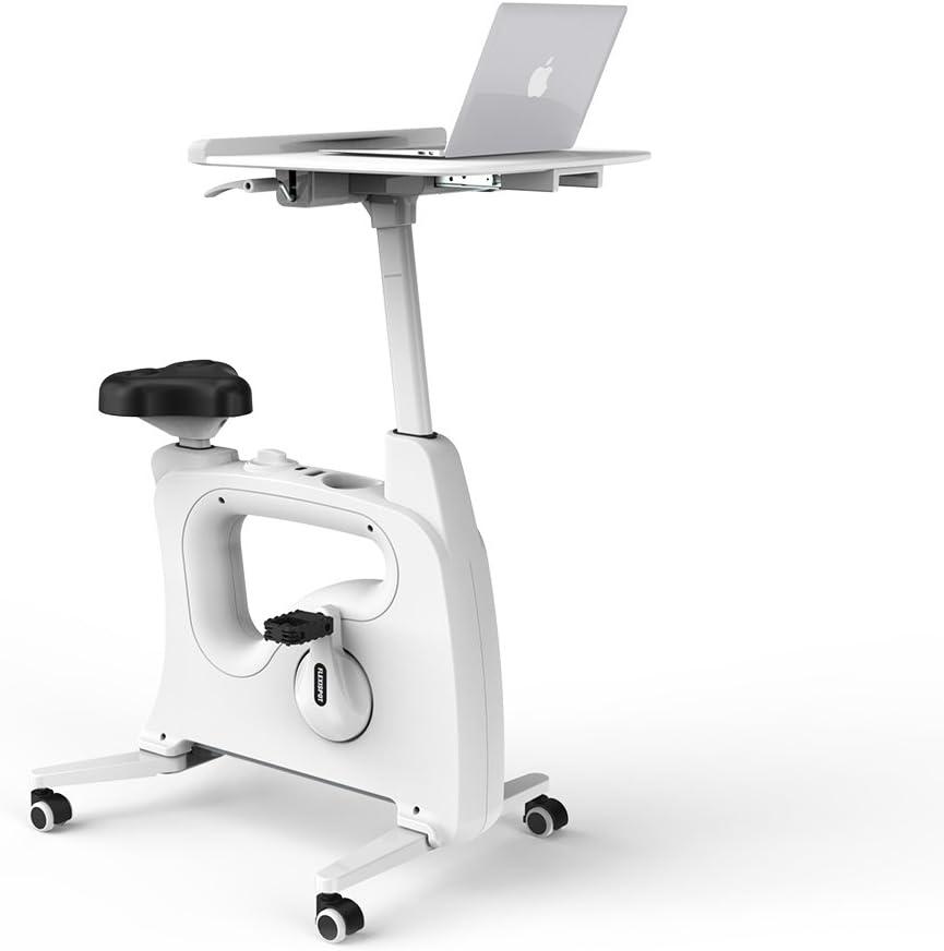 FLEXISPOT Desk Exercise Bike Home Office Standing Desk Cycle