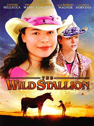 DVD : The Wild Stallion
