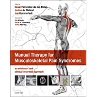 Manual Therapy for Musculoskeletal Pain Syndromes: an evidence