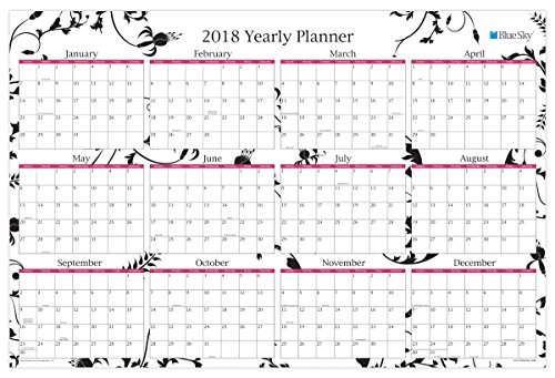 """Blue Sky 2018 Laminated Erasable Wall Calendar, Double Sided, 36"""" x 24"""", Analeis"""