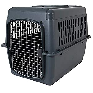 2. Aspen Pet Porter Heavy-duty Pet Carrier