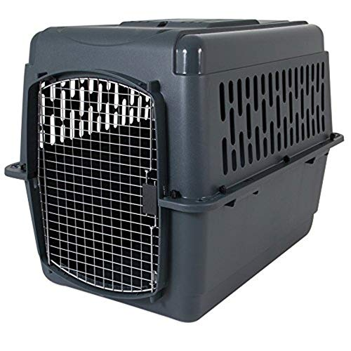Dog Travel Kennel - Aspen Pet Porter Heavy-Duty Pet Carrier,Dark Gray/Black,50-70 LBS