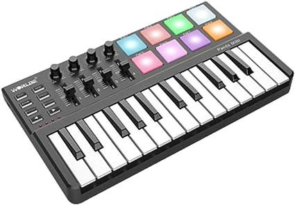 NBCDY Teclado Musical USB, Panda Mini portátil de 25 Teclas y ...