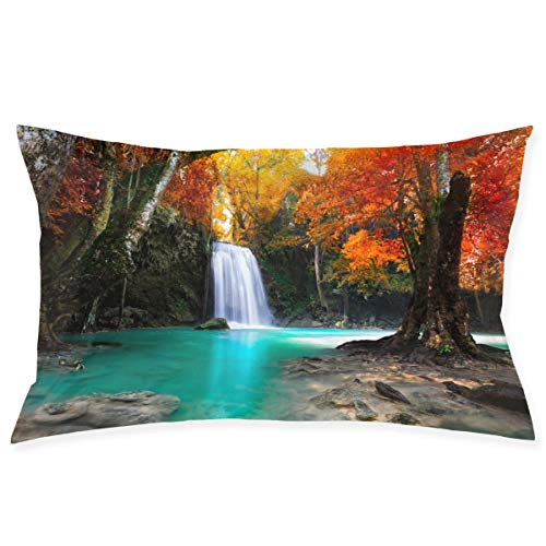 (Eratdatd Customized Design Name 20x30 Inch Pillow Sleeve,Personality Cushion Sleeve and Sofa Pillow Sleeve is Soft and Comfortable, Non-Fading.)