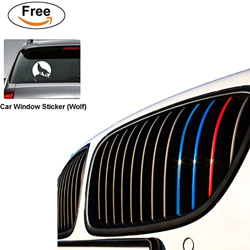 free shipping Fastgo Reflective Colored bmw kidney grille stripes