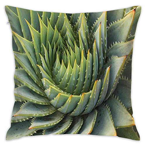Uanlic Decorative Throw Pillows Covers with Insert,Botanic Spikey Wild Nature Inspired Western Dessert Plant Flower Artwork Image,18x18 Inches Square Patio Cushions for Couch Bed Sofa Patio Furniture (Patio Uk Square Furniture Covers)
