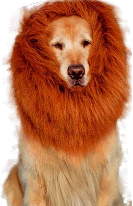 Pawaca Lion Mane para perro – Disfraz de león de perro divertido ...