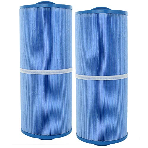 2 Guardian Pool Spa Filter Cartridges Replace FC-0196M 5CH-502 PPM50SC-F2M-M, Antimicrobial ()