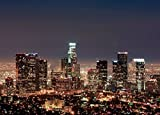 7x5ft Los Angeles City Night Skyline Backdrop Vinyl Cloth Computer Printed Scenic Backdrop Backgrounds for Sale shu527313298