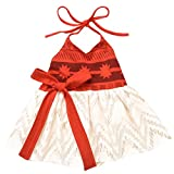 AmzBarley Moana Dress for Baby Girls Costume First Birthday Theme Party Fancy Ball Cotton Dresses Halloween Age 1-6 Months Size 18M