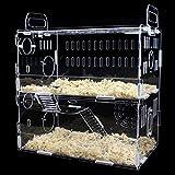 Toparchery Transparent Acrylic Pet Animals Hamster Clear View House 2 Tiers Castle Rat Mouse Cage Villa (Type D)