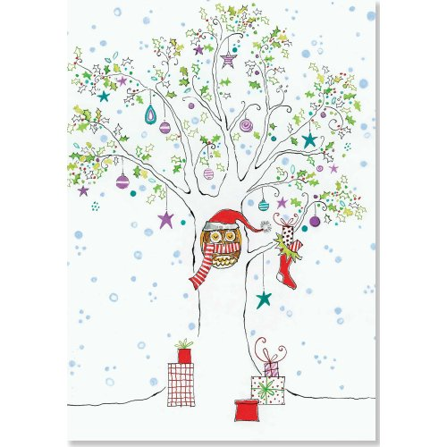 Festive Owl Small Boxed Holiday Cards (Christmas Cards, Greeting Cards)