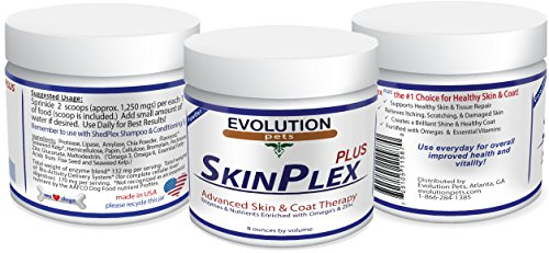 Top Rated and Best Digestive Enzymes for Dogs.  SkinPlex (Canine Skin Problems)