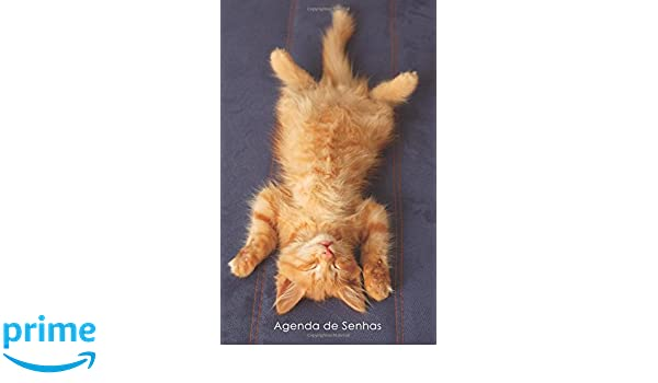Agenda de Senhas: Agenda para endereços eletrônicos e senhas: Capa gatinho ruivo a relaxar - Português (Brasil) (Agendas com gatos) (Portuguese Edition): ...