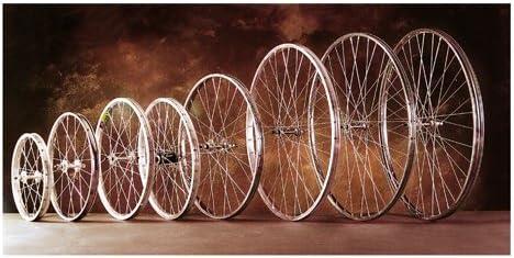 Rueda 700 X 28 C Aluminio Trasera - 622.: Amazon.es: Deportes y aire libre