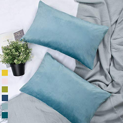 YINFUNG Lumbar Pillow Covers 12x20 Light Blue Rectangle Velvet Pillow Cover Sky Blue Soft Bolster Pillow Covers Baby Blue Pastel Couch Daybed Sofa Set of 2 - Pastel Satin Pillow