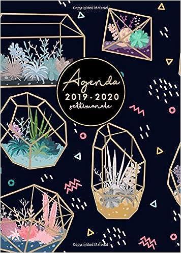 Agenda settimanale 2019 2020: Agenda 16 Mesi Giornaliera A5 ...