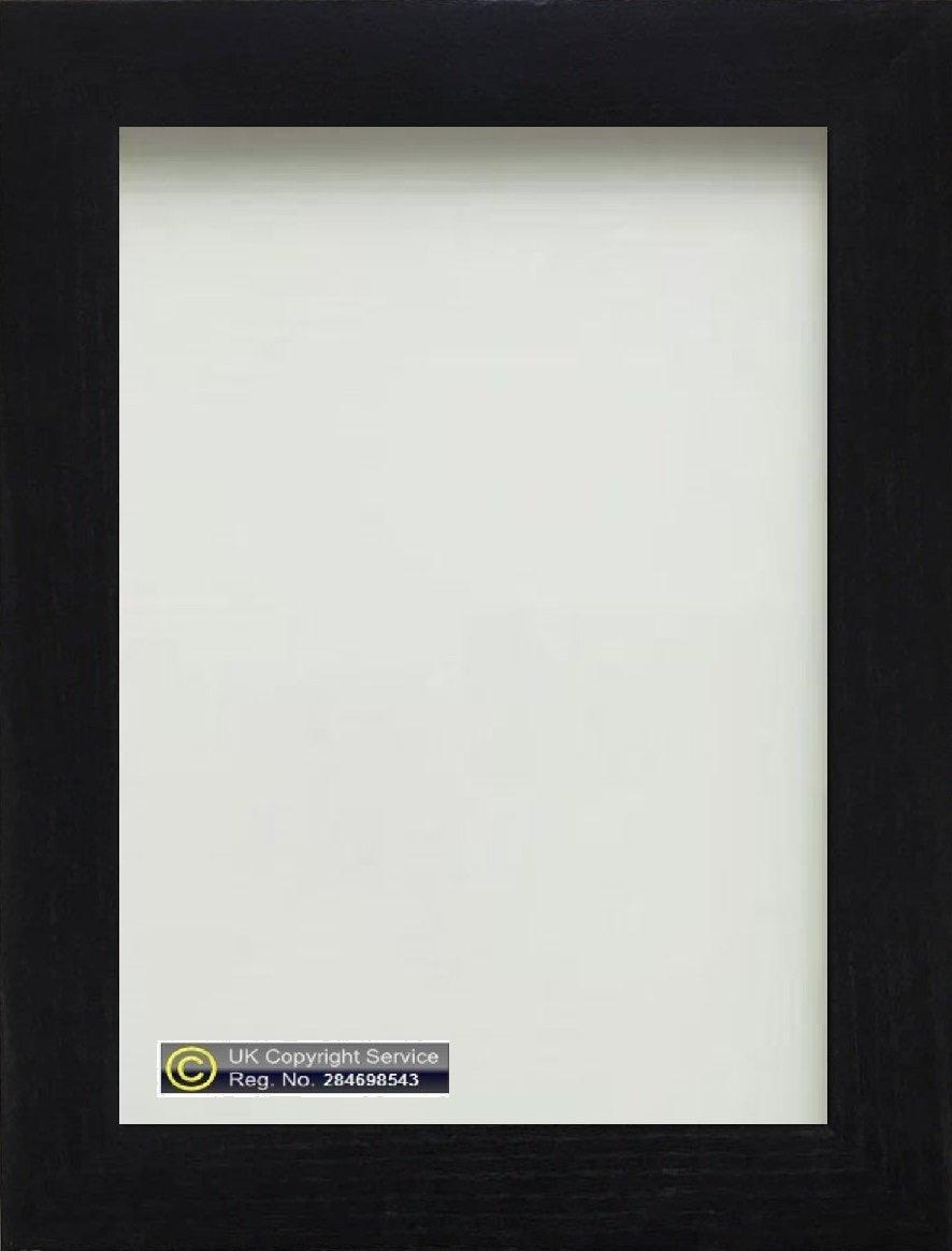 Amazon.de: Foto Rahmen Bilderrahmen Poster 10 x 20, 3 cm ...