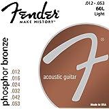 Fender 60L 073-0060-403 Acoustic Guitar Phosphor Bronze Ball End Strings, 12-53
