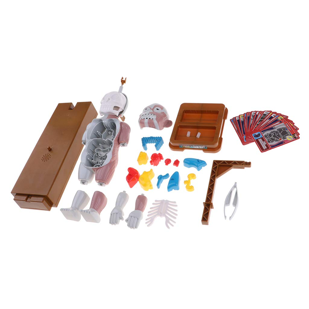 CUTICATE Educational Human Anatomy Game Toy Fun Board Game for Halloween Parties by CUTICATE