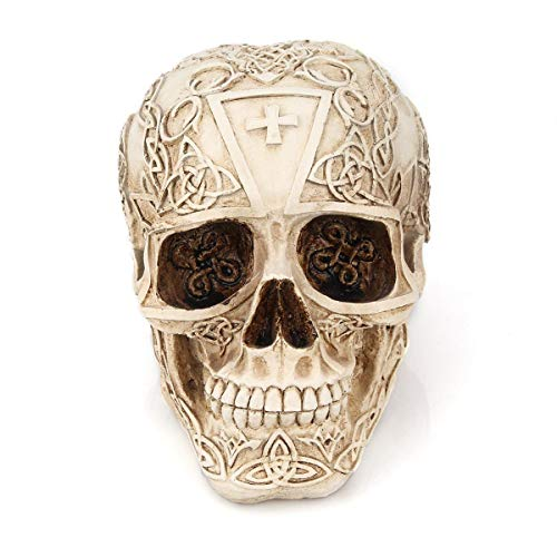 Aolvo Fascinating Mysterious Flower Skull Figurines, Exquisite Viking Pirate Floral Skull Statue, Fantasy Gothic Medieval Gifts for Scary Halloween Decorations Home Ornament Bar Decor]()