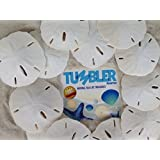 "Tumbler Home Certified - Sand Dollars 3""-3.5""set of 12 - Wedding Seashell Craft - Hand Picked and Professionally Packed"