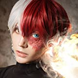 Shoto Todoroki Cosplay Wig, Two Tone Half Silver White Half Red Short Japanese Anime Wig for Halloween