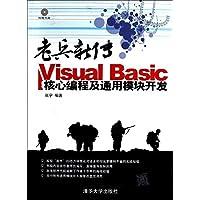 老兵新传:Visual Basic核心编程及通用模块开发(附光盘)