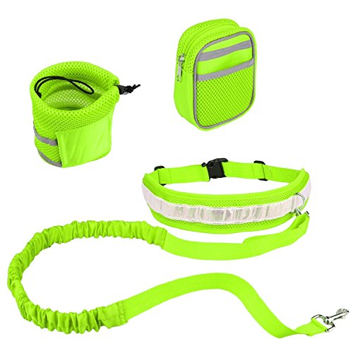 PYRUS Reflective Traction Leashes Perfect