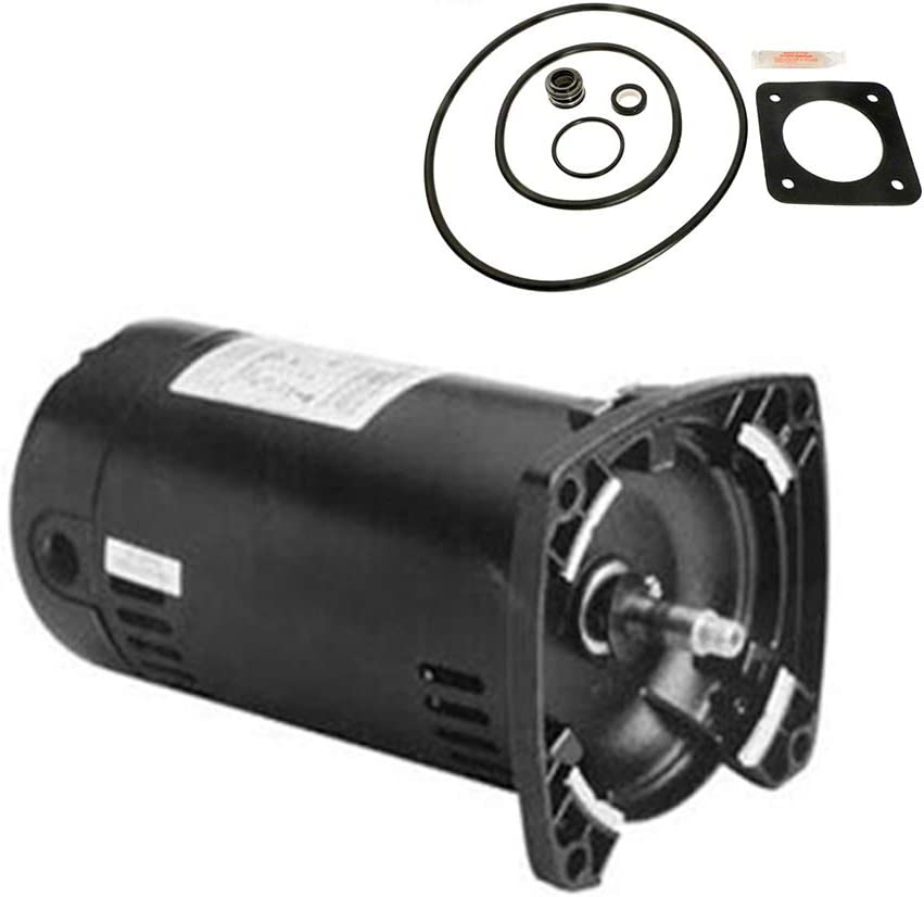 Puri Tech Sta-Rite Dura-Glas .75HP P2RA5D-180L Replacement Motor Kit AO Smith USQ1072 w/GO-KIT-6