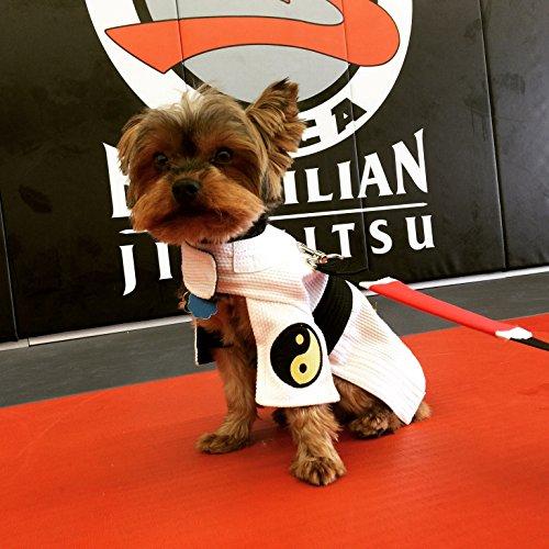 [New Item DogGi Jiu Jitsu Judo Karate Martial Arts Dog Gi Kimono (SMALL, WHITE)] (Kimono Costume For Dogs)