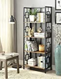 Vintage Brown Finish Black Metal Wall 4-Tier Bookshelf Bookcase