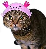 Kitan Club Cat Cap - Pet Hat Blind Box Includes 1