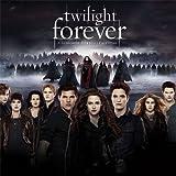 2014 twilight forever Wall Calendar