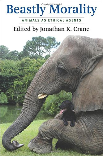 Read Online Beastly Morality: Animals as Ethical Agents PDF