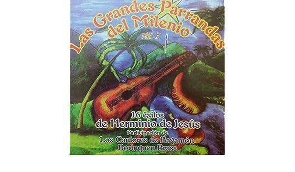 bc3e4366d6850 Las Grandes Parrandas Del Milenio, Vol. 1 by Herminio De Jesus on ...