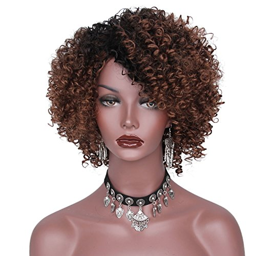 Beauty : AisiBeauty Natural Brown Medium Short Curly Wigs with Dark Roots Short Fluffy Curly Hair Wig for Black Women Heat Resistant Synthetic Wig