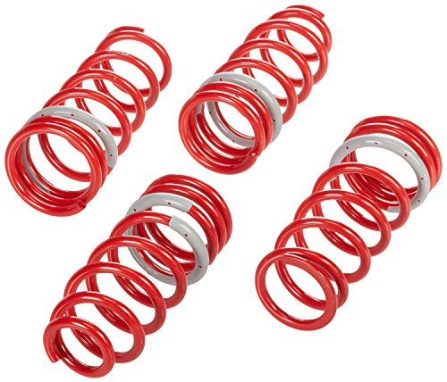 Tanabe Df210 Lowering Springs - Tanabe TDF24B DF210 Lowering Spring with Lowering Height 2.0/1.5 for 1998-2005 Lexus GS400/430