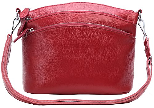 Heshe Womens Leather Handbags Shoulder Bag Small Bags Designer Handbag Crossbody Satchel and Purses for Ladies (Wine)