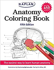 Anatomy Coloring Book Answers Chapter 6